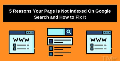 5-Reasons-Your-Page-Is-Not-Indexed-On-Google-Search-and-How-to-Fix-It