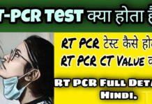RT PCR